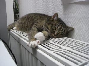 Радиаторы Керми (Kermi) и отопление бассейнов